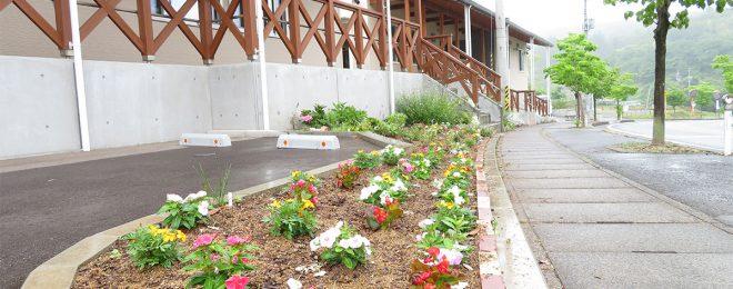 花壇の写真2