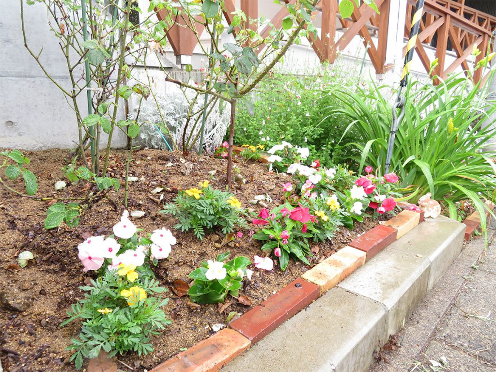 花壇の写真1